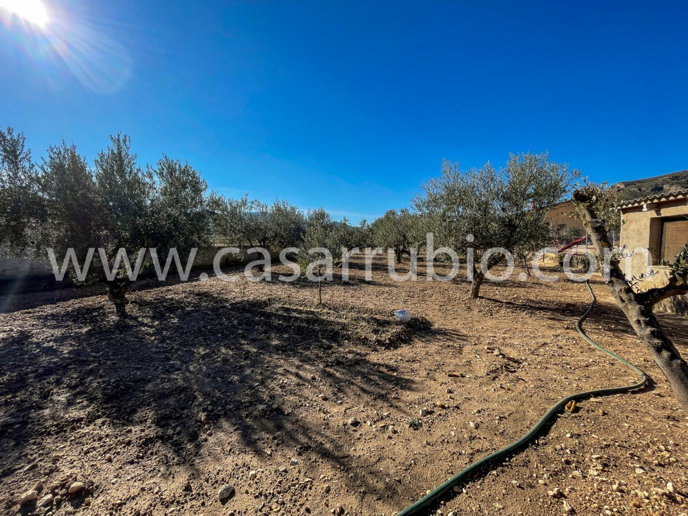 Casas de campo en la zona de la cava de onil !!! - imagenInmueble19