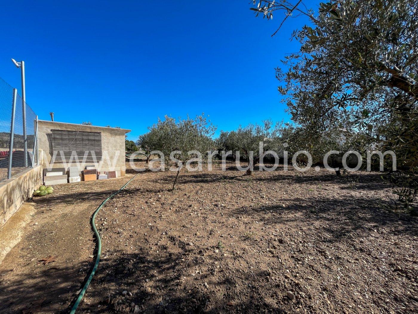 Casas de campo en la zona de la cava de onil !!! - imagenInmueble7