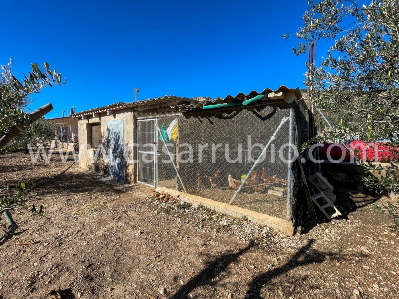Casas de campo en la zona de la cava de onil !!! - imagenInmueble8