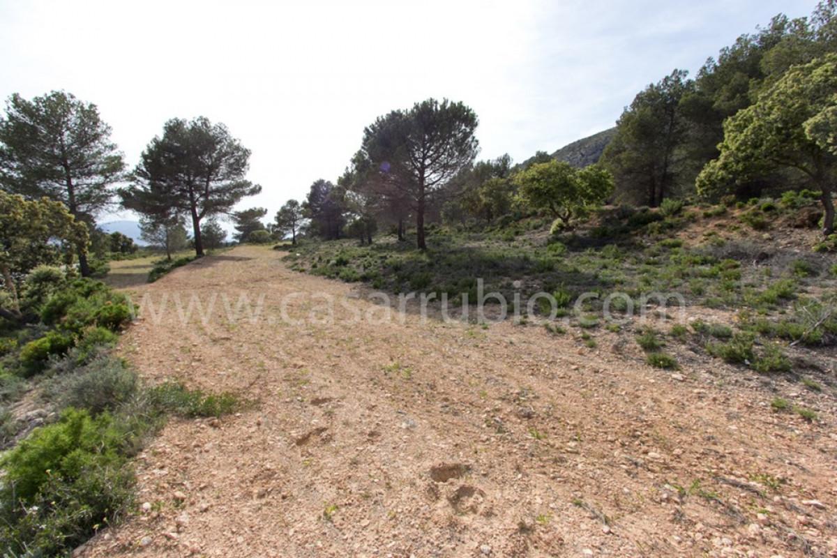 Venta de terreno rural en ibi - imagenInmueble5