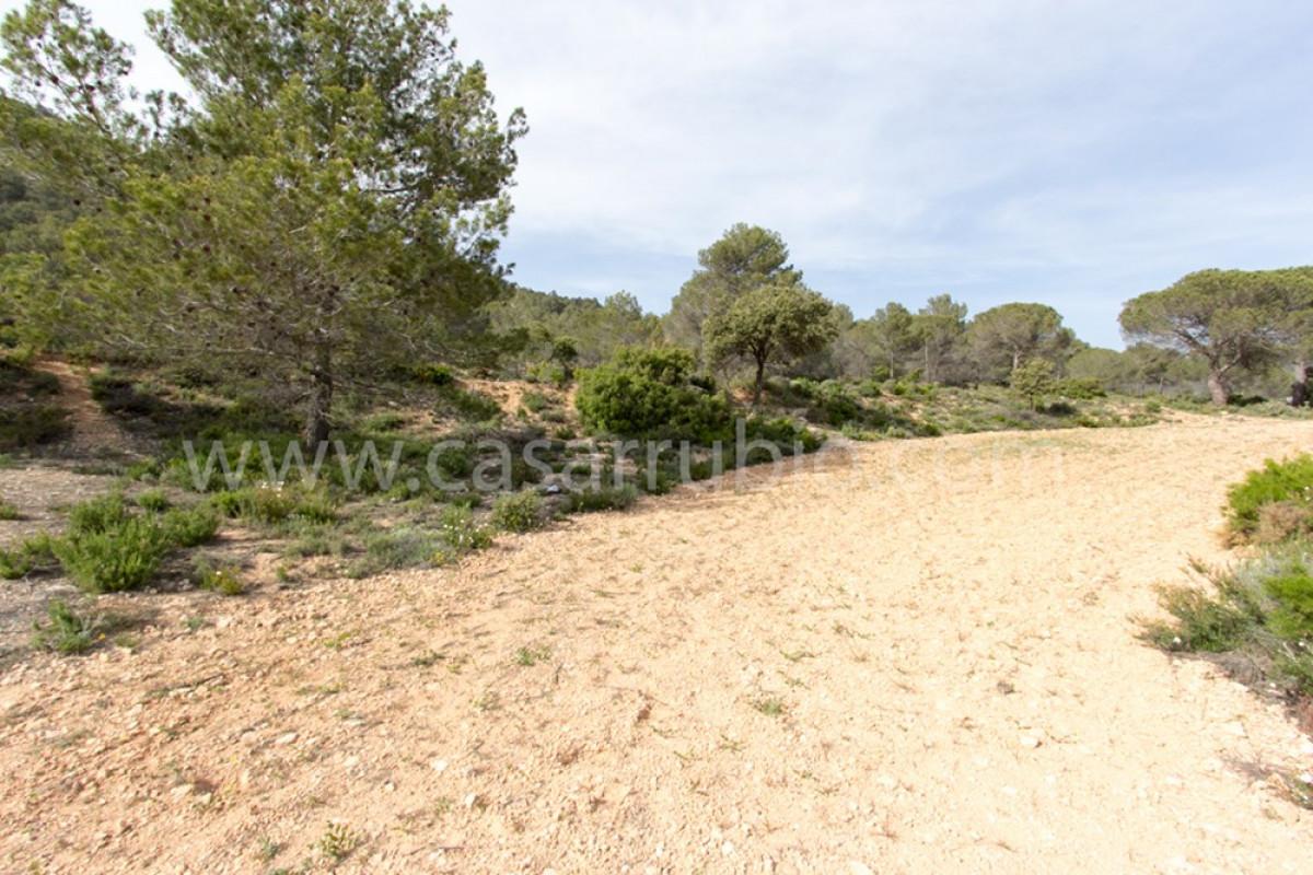 Venta de terreno rural en ibi - imagenInmueble6