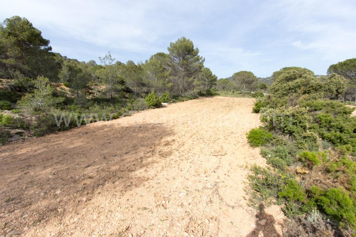 Venta de terreno rural en ibi - imagenInmueble8