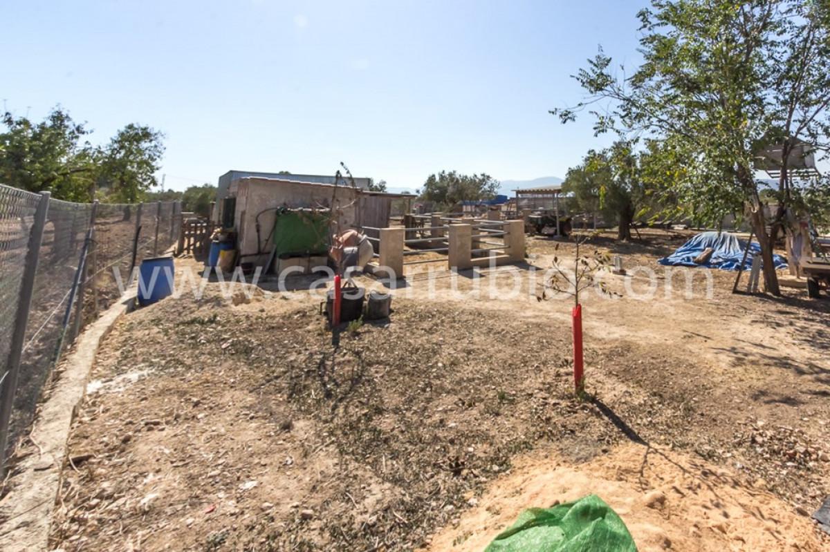 Venta de casa de campo en onil - imagenInmueble20