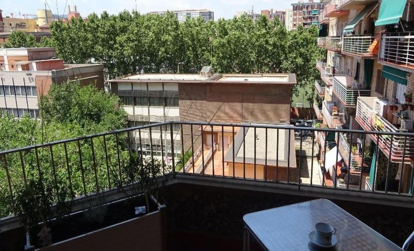 Piso en barcelona (sant martí de provençals) - imagenInmueble3