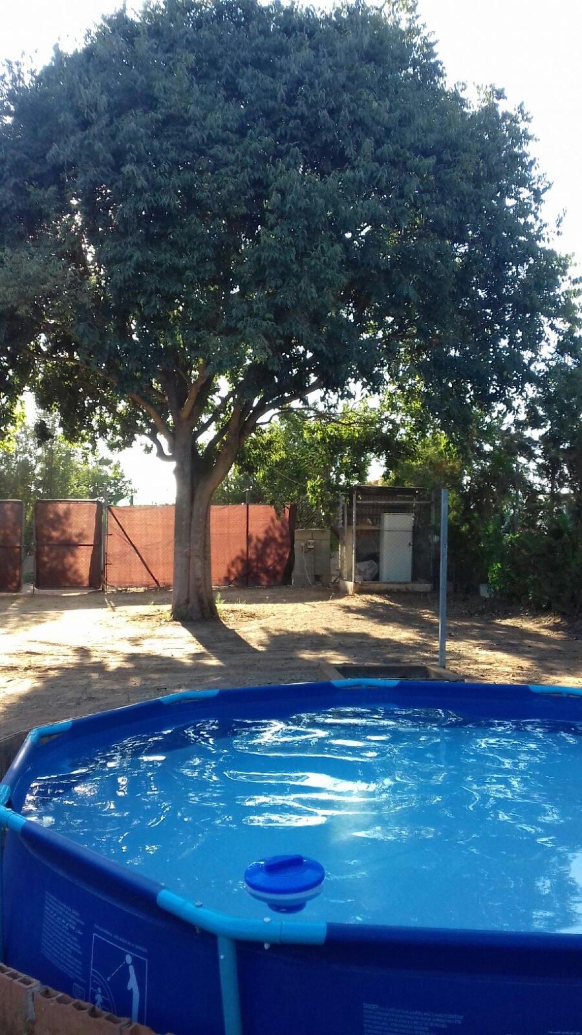 terreno-rural en alcala-de-guadaira · - 52000€