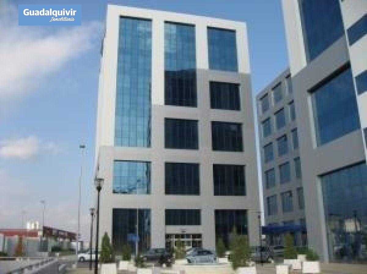 oficina en sevilla · pino-montano 350€