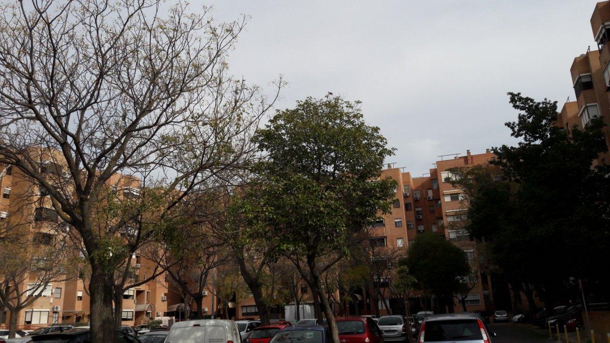 piso en sevilla · sevilla-este 128000€