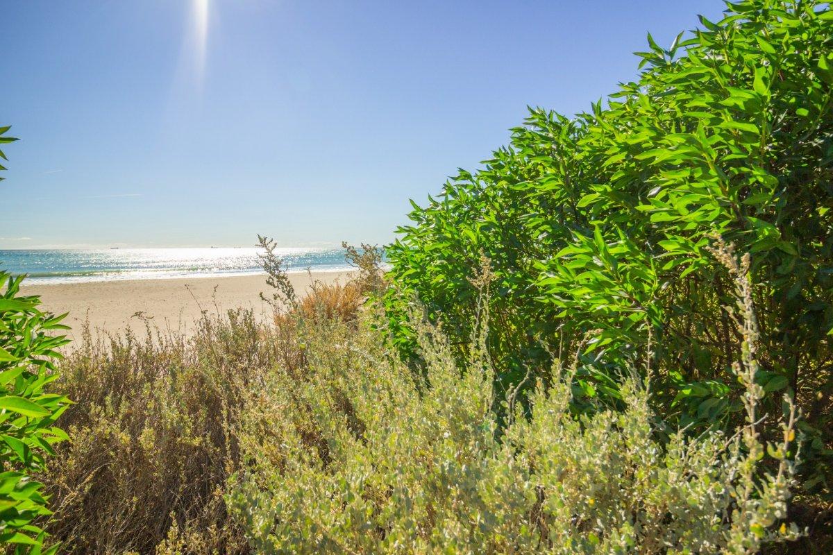 Entre las playas serradal y heliópolis. 3 hab, 2 terrazas, baño completo, garaje y traster - imagenInmueble13