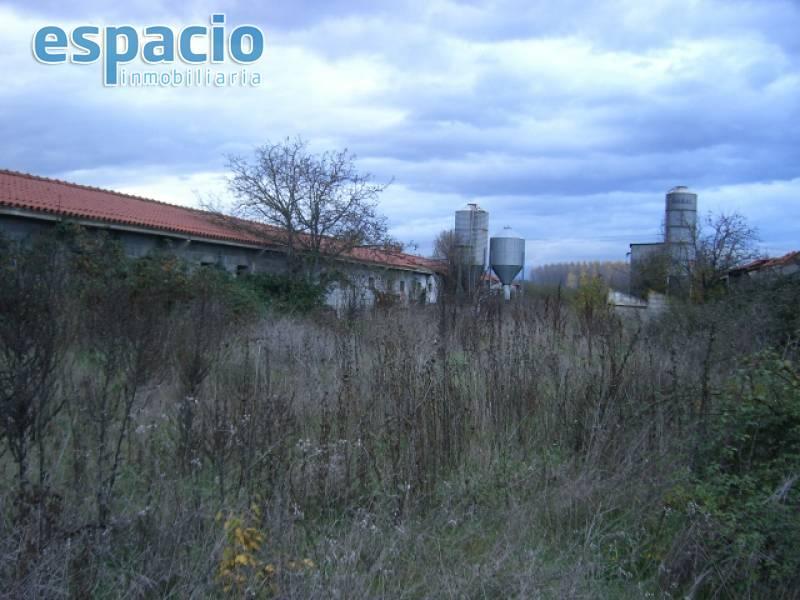 rustic properties venta in carracedelo carracedelo