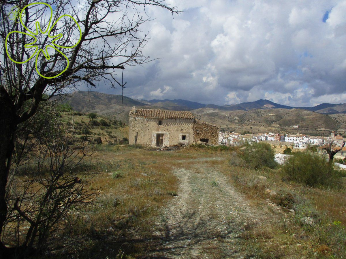 Ref:00307-6080 cortijo For Sale in Albanchez