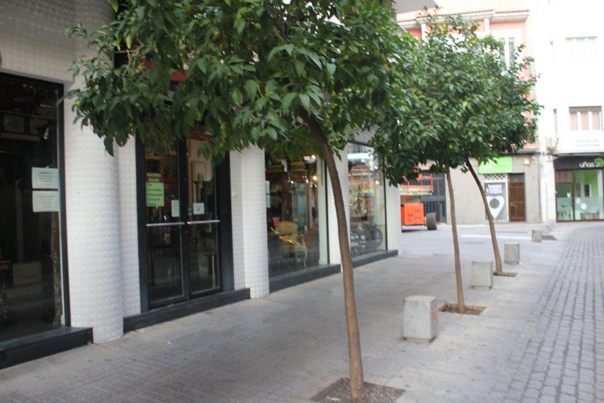 local-comercial en cordoba · centro 800€