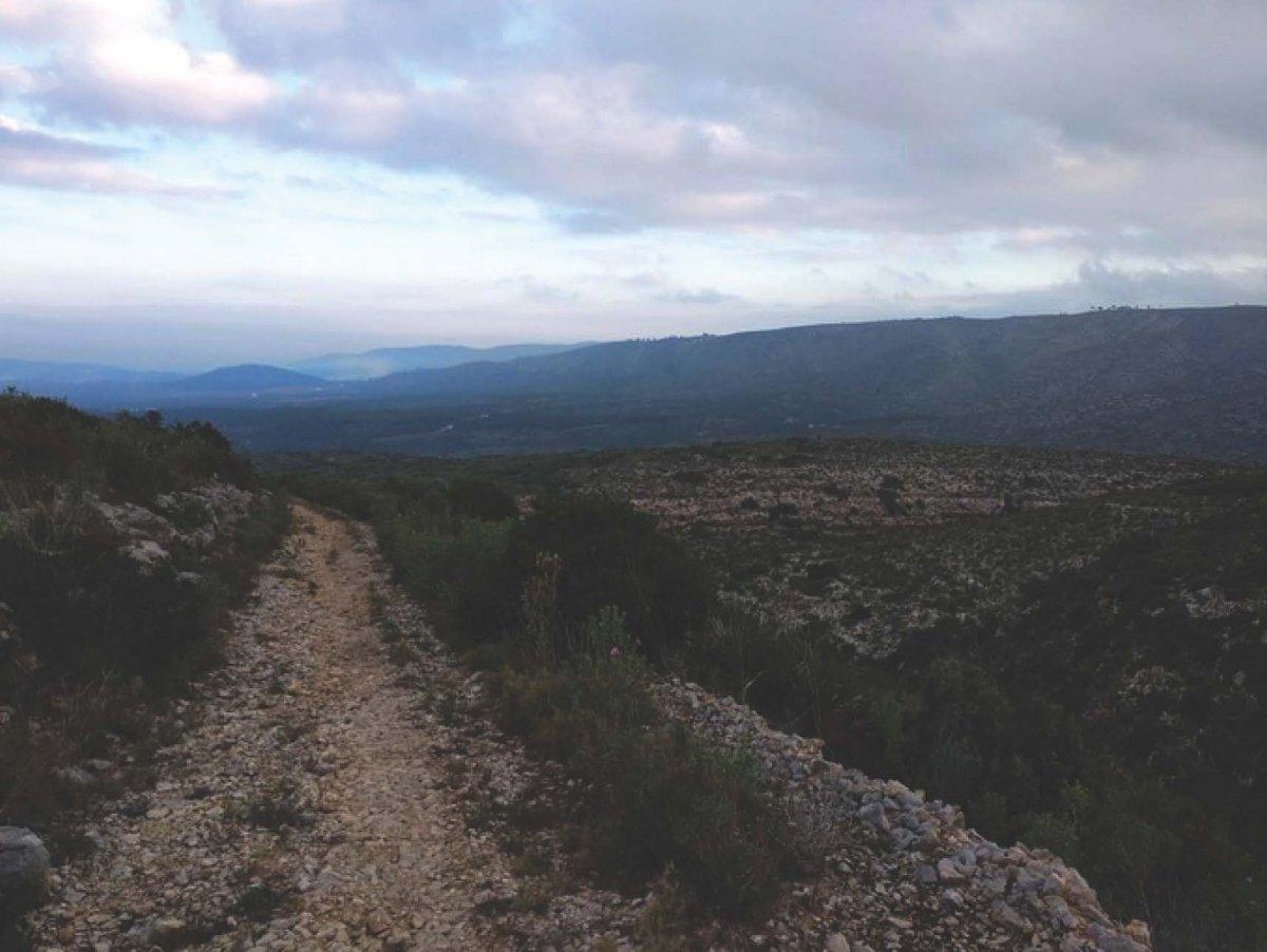terreno-rural en barxeta · periferia 24000€