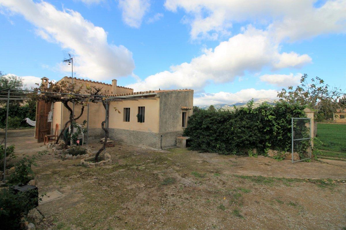 Terrenos rurales - 00208