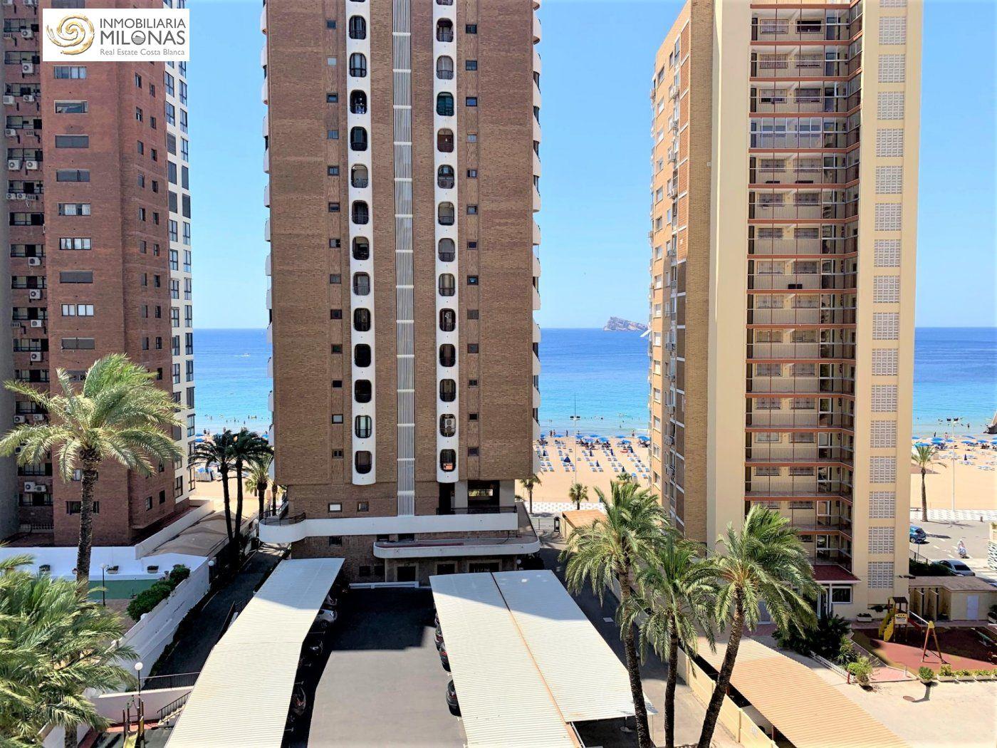 apartamento en benidorm · avenida-del-mediterraneo 850€