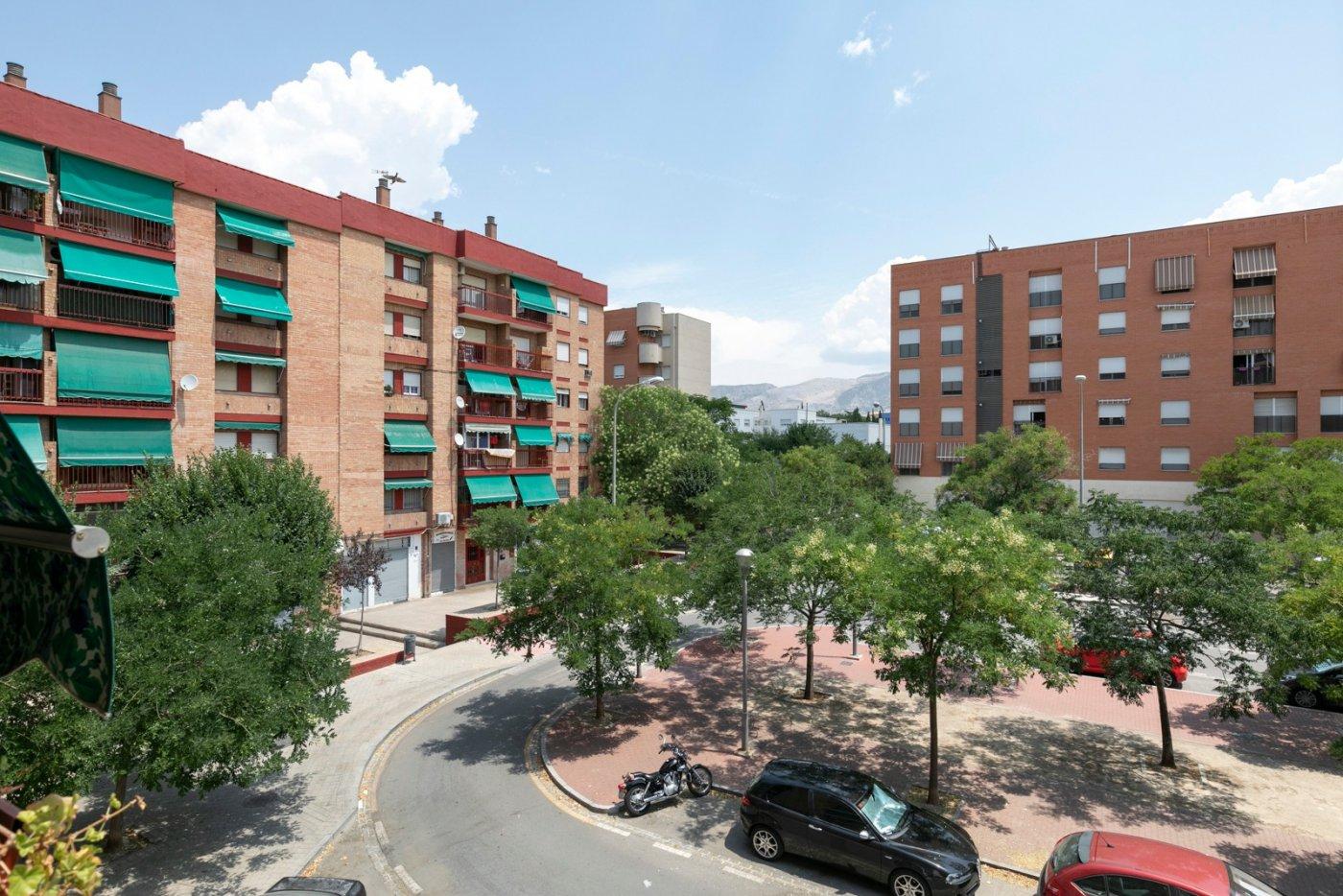 ¿Vivir o invertir?, Granada