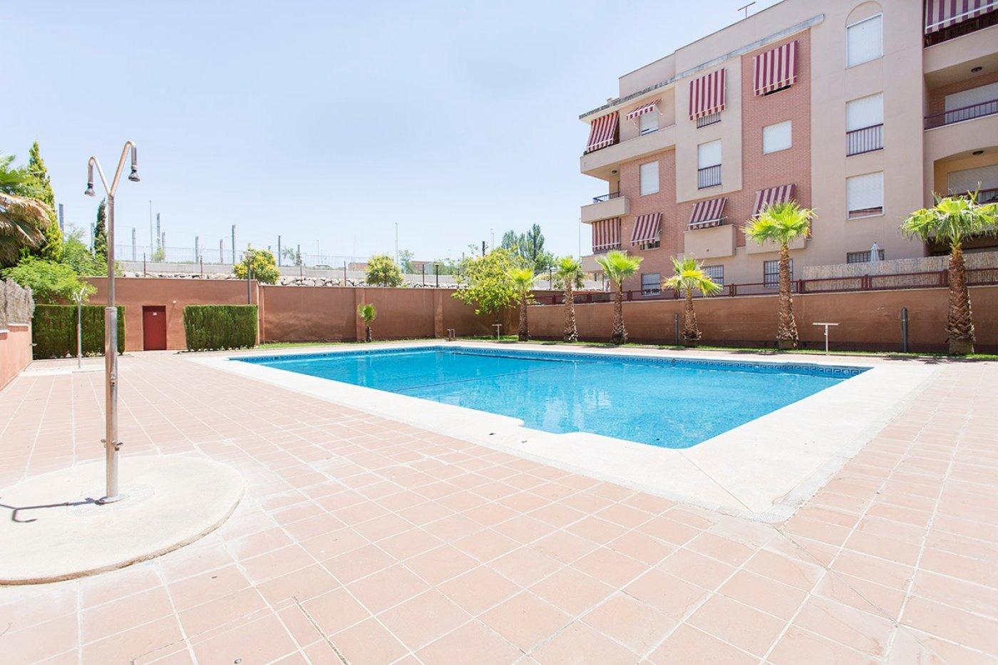 Extraordinario piso junto Parque Almunia., Granada