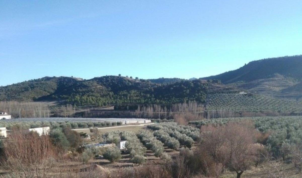 Terreno Rural en Jayena, Granada