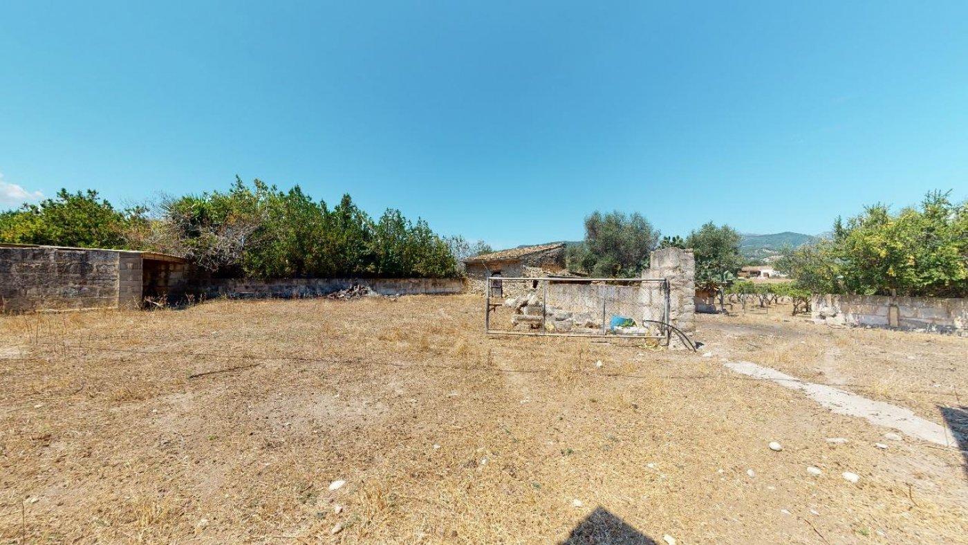 Estupenda propiedad agraria con nave - imagenInmueble13
