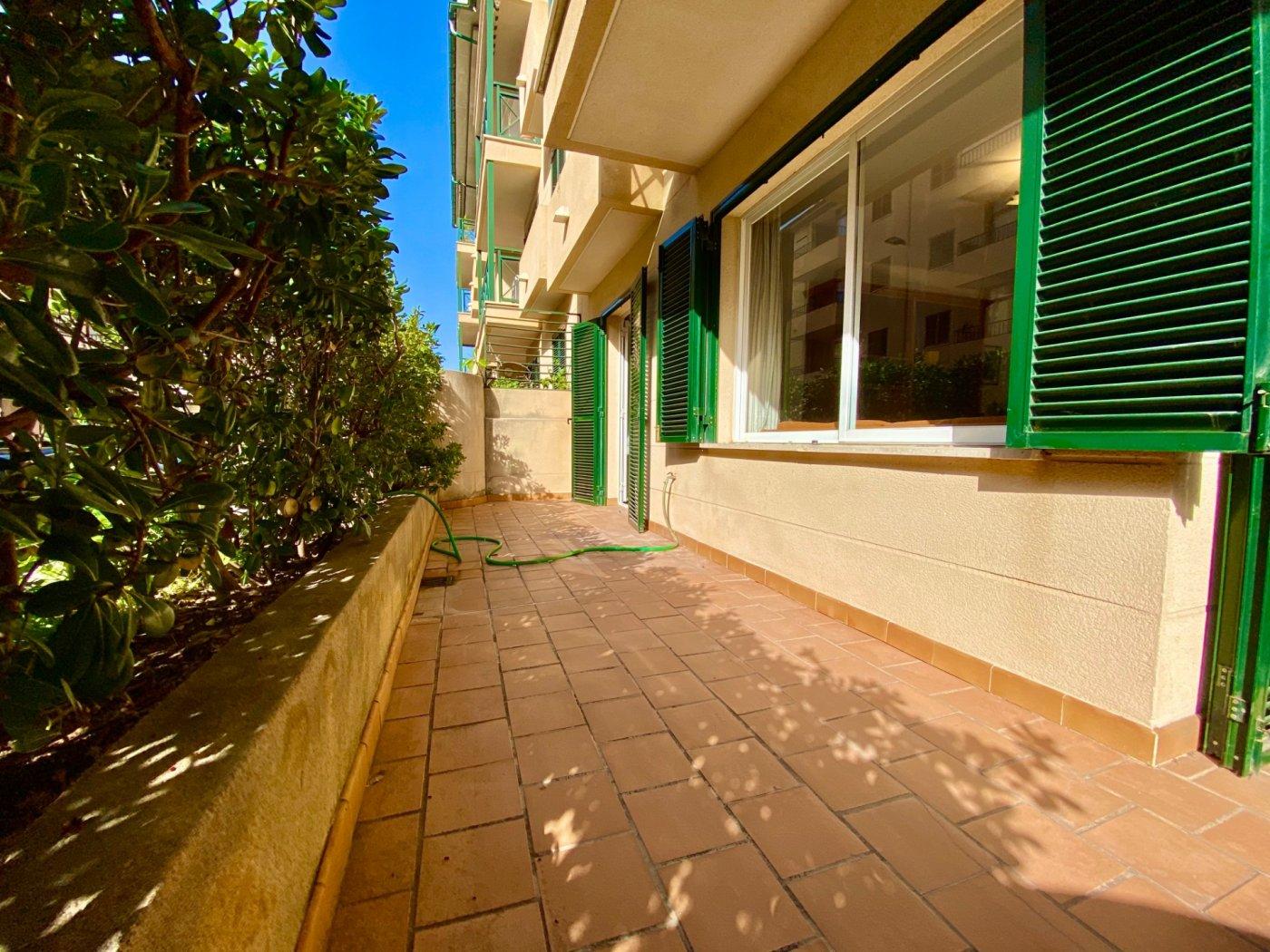Céntrica planta baja con dos terrazas y plaza de parking - imagenInmueble15