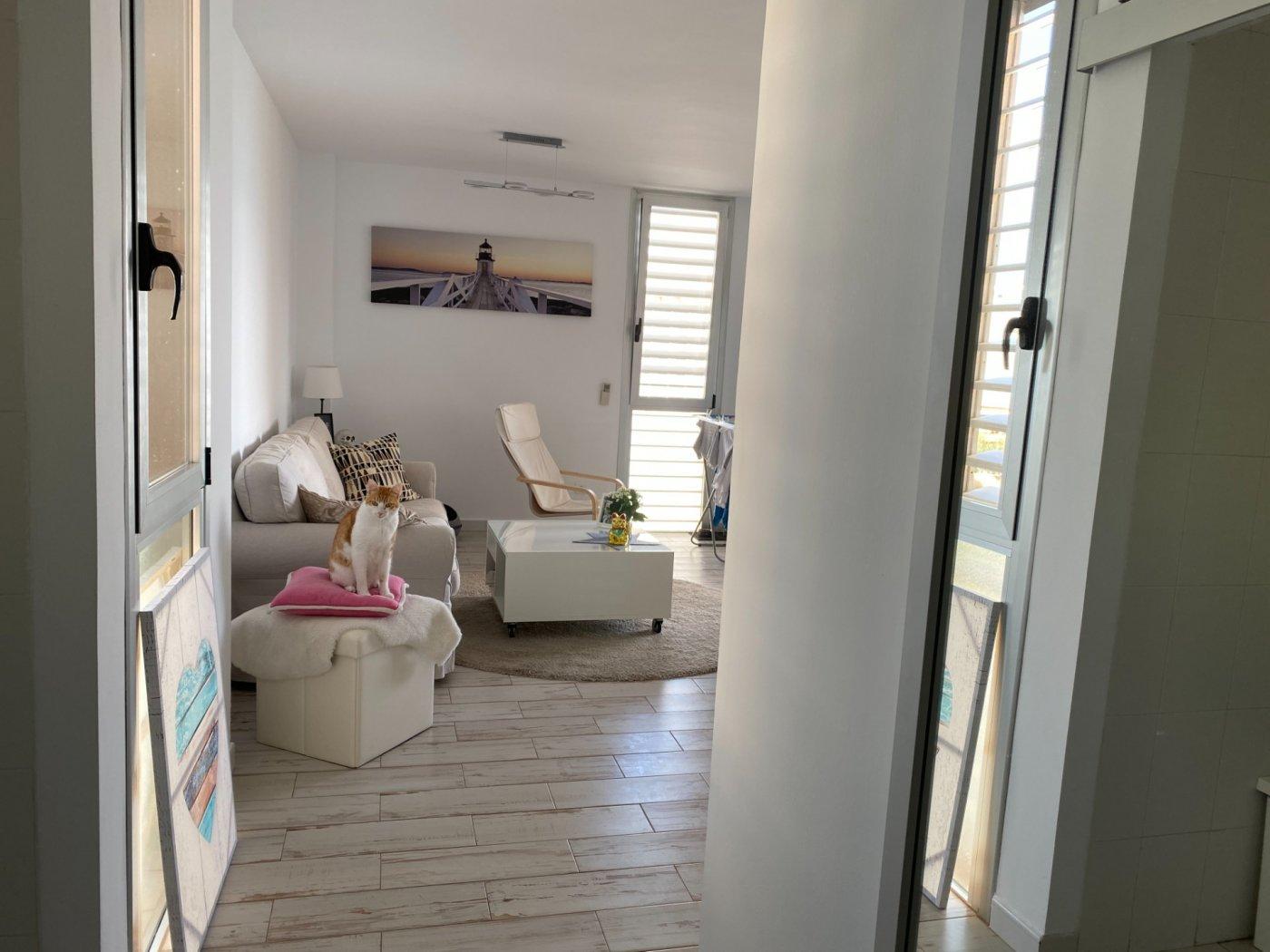 Alquiler con opcion de compra!espectacular apartamento con vistas al mar y parking propio - imagenInmueble35