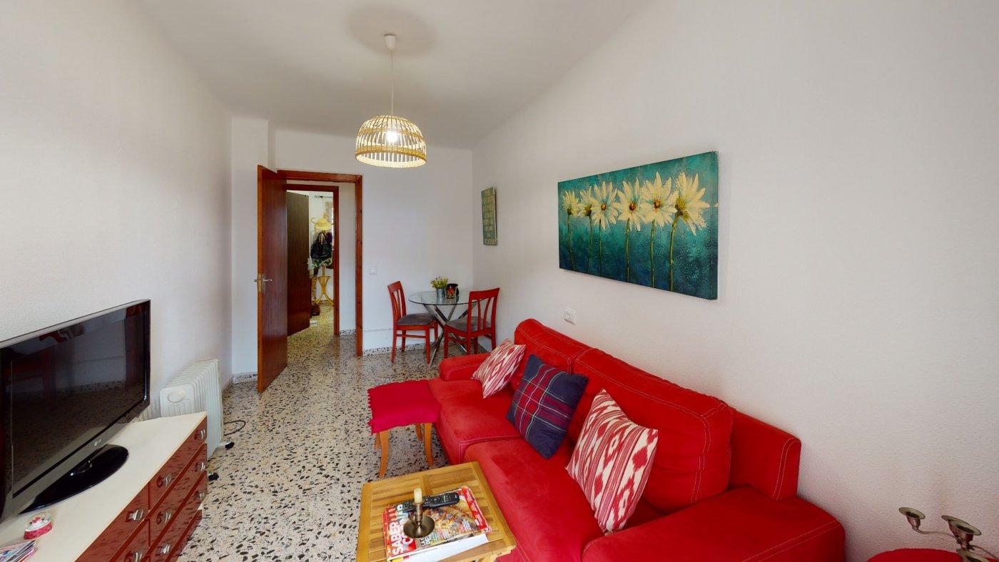 Encantador piso en palma de mallorca - imagenInmueble31