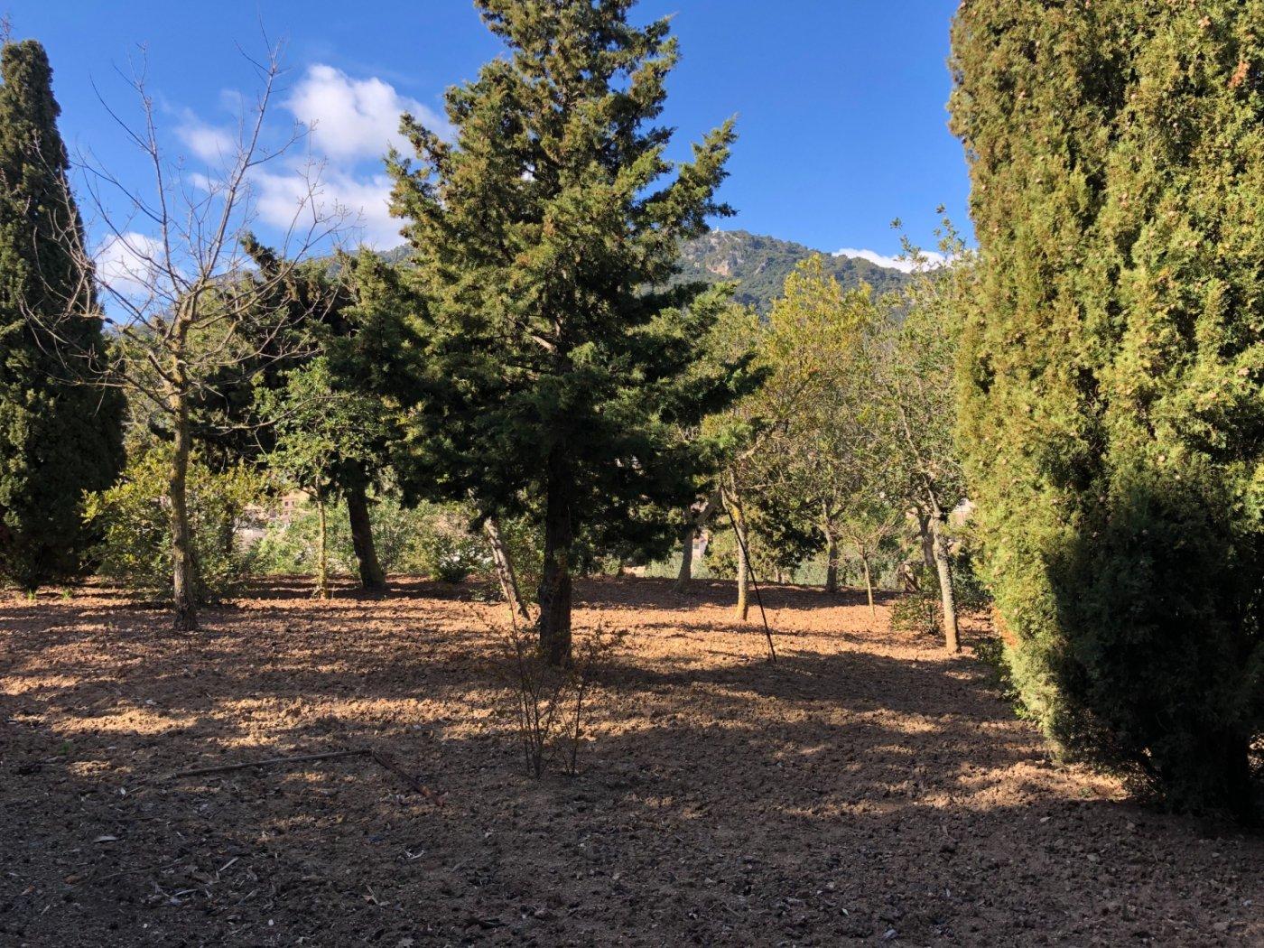 Oportunidad de comprar un fantástico terreno en suelo urbano en esporles - imagenInmueble8