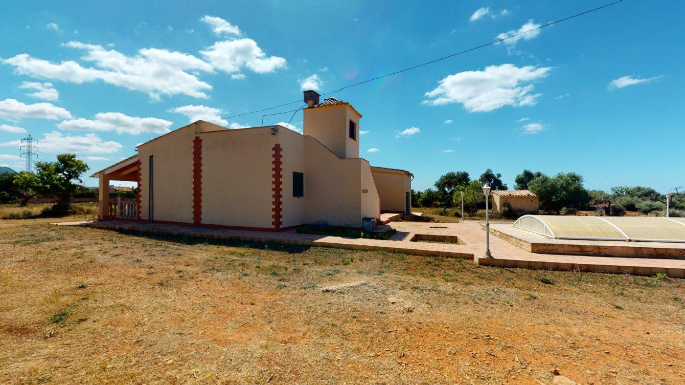 Casa en llucmajor, finca rústica con gran piscina - imagenInmueble4