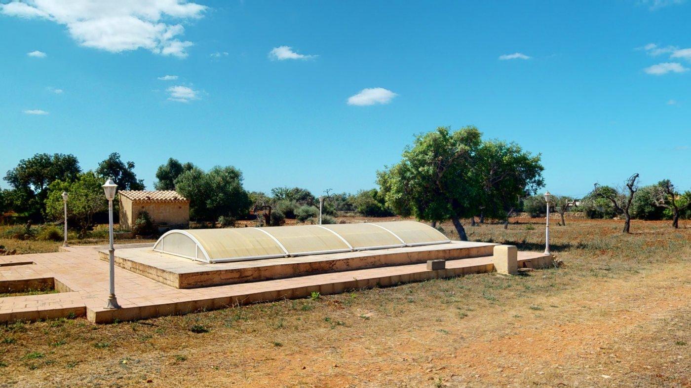 Casa en llucmajor, finca rústica con gran piscina - imagenInmueble5