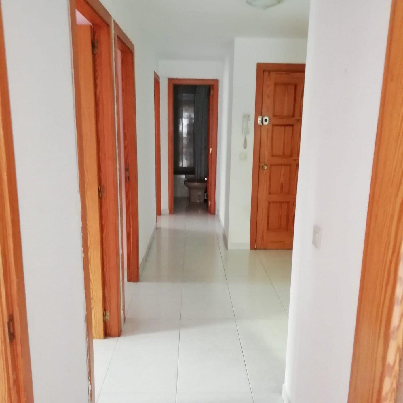 Se alquila: amplio piso en son cotoner, palma - imagenInmueble14