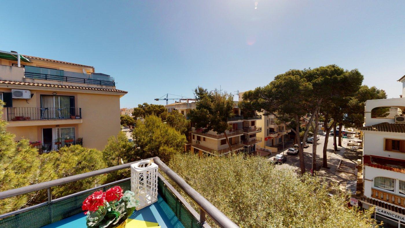 Se vende piso en cala millor - licencia turistica!!! - imagenInmueble34