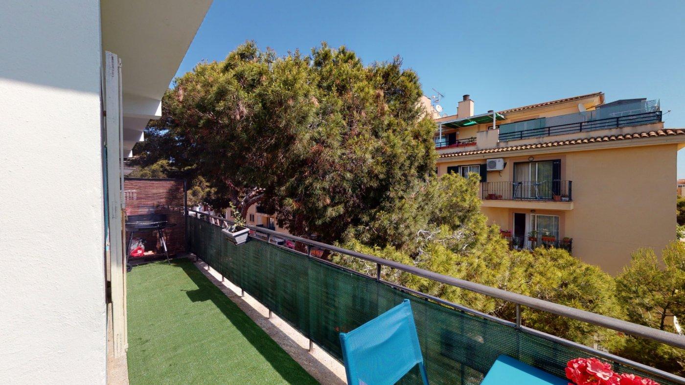 Se vende piso en cala millor - licencia turistica!!! - imagenInmueble35