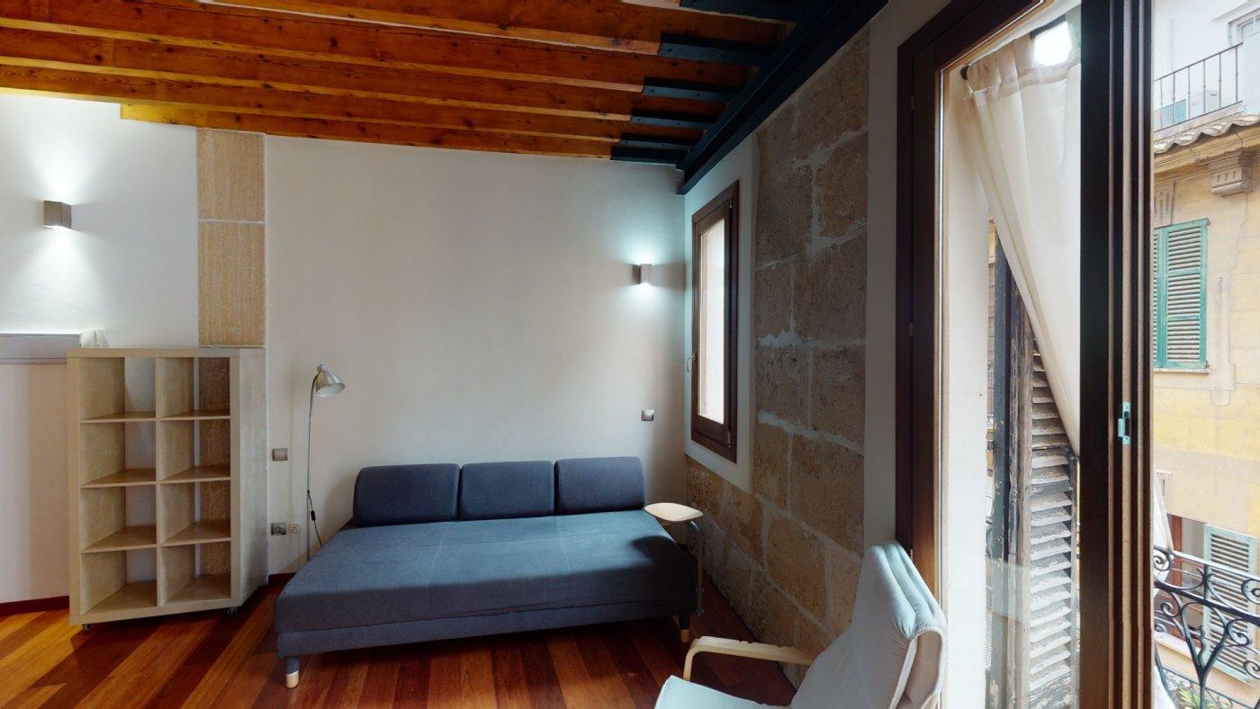 Coqueto estudio en el centro de palma - imagenInmueble13
