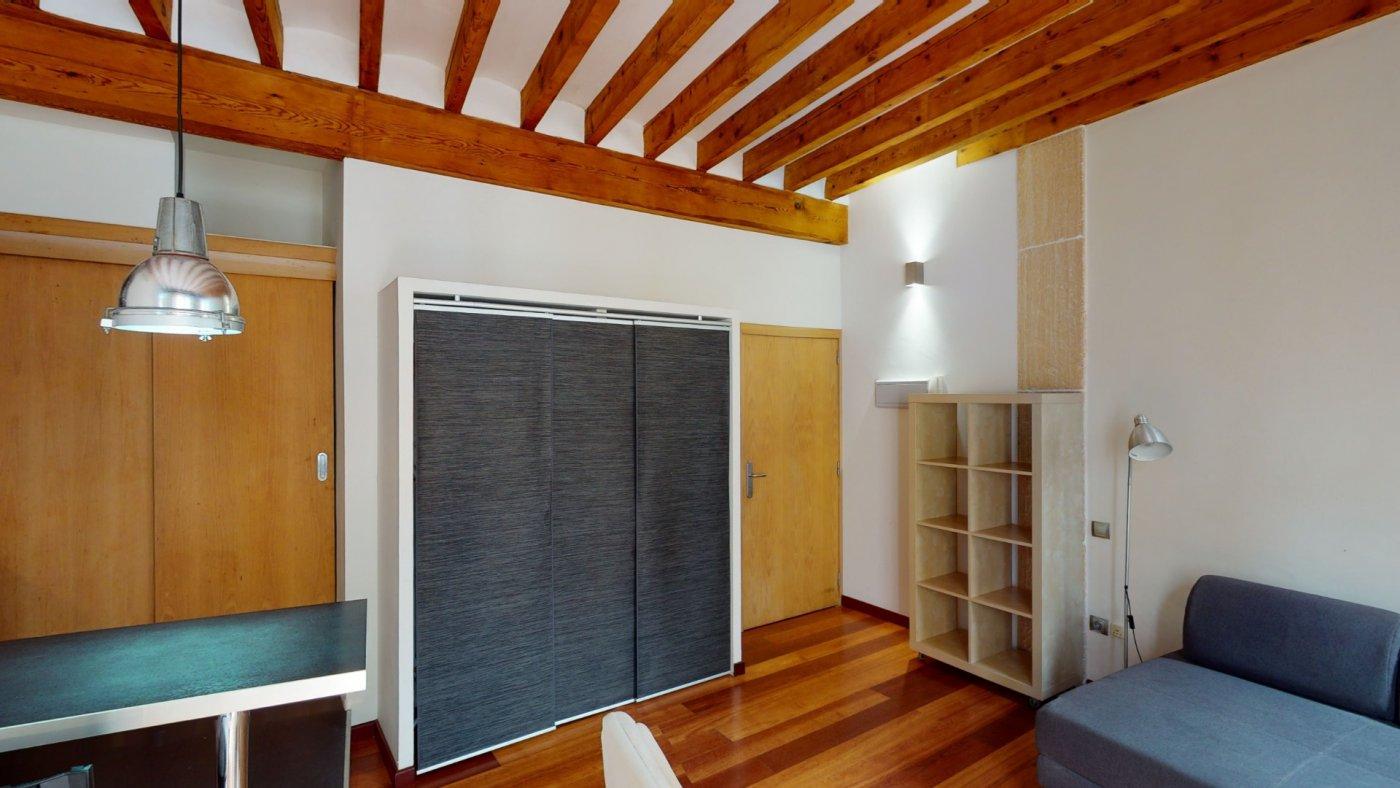 Coqueto estudio en el centro de palma - imagenInmueble17
