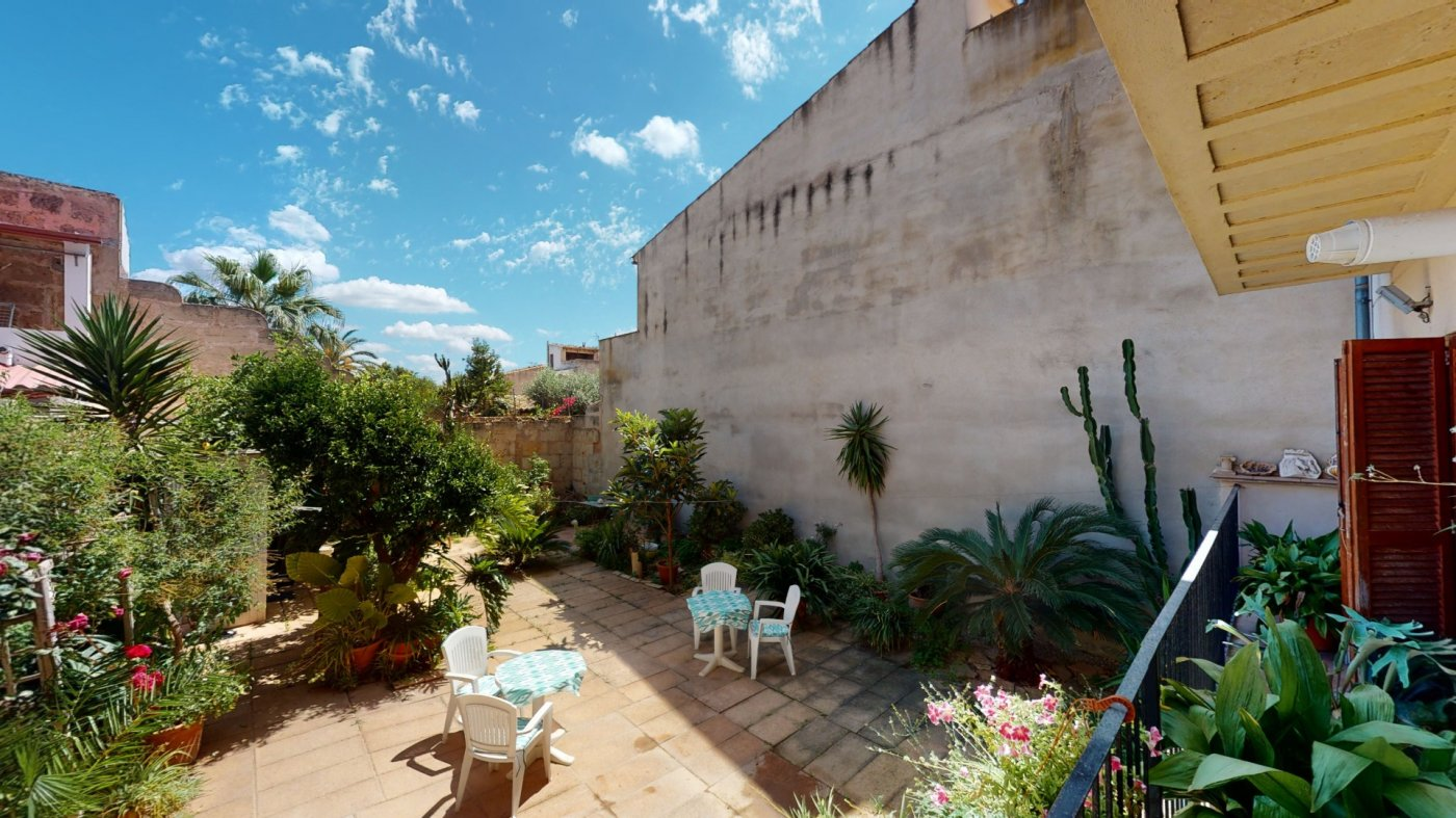 Hermosa planta baja con terraza y patio - imagenInmueble34