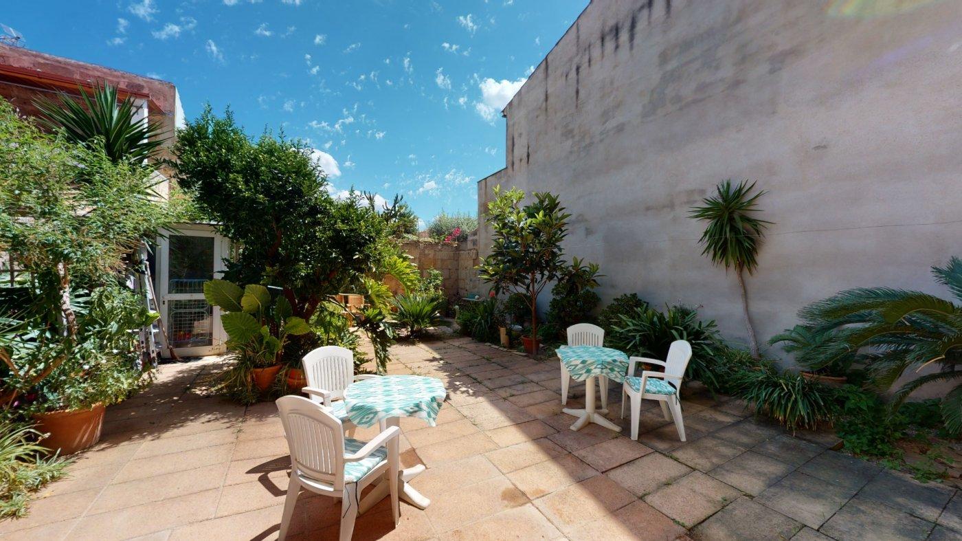 Hermosa planta baja con terraza y patio - imagenInmueble35