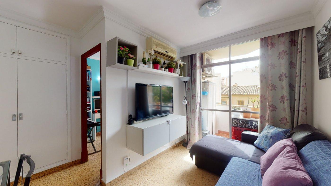 Oportunidad, en venta apartamento en palma centro - imagenInmueble23