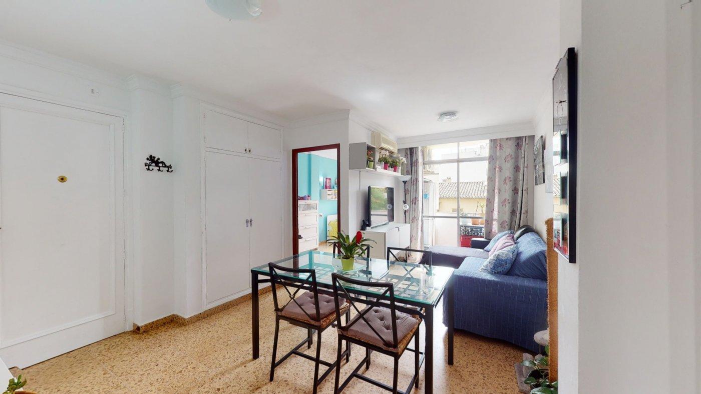 Oportunidad, en venta apartamento en palma centro - imagenInmueble3