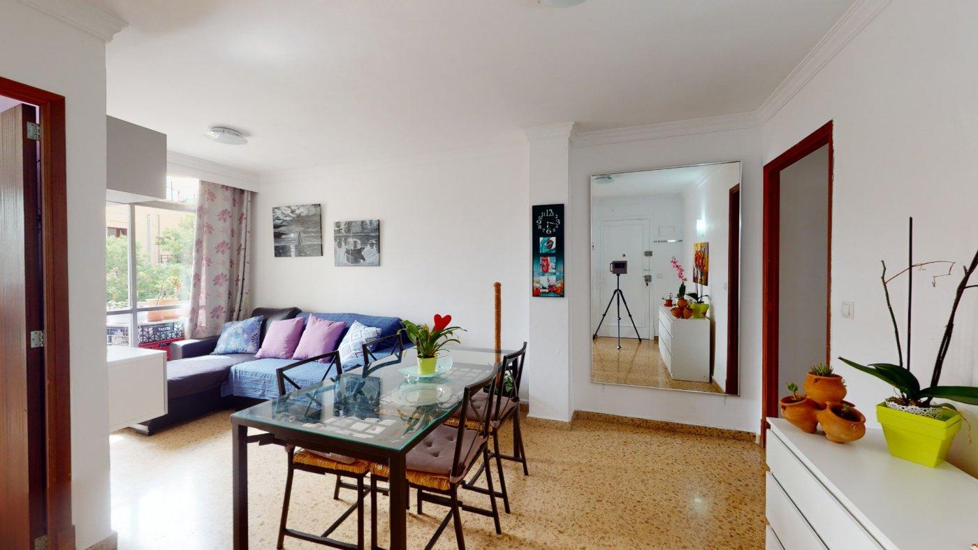 Oportunidad, en venta apartamento en palma centro - imagenInmueble4