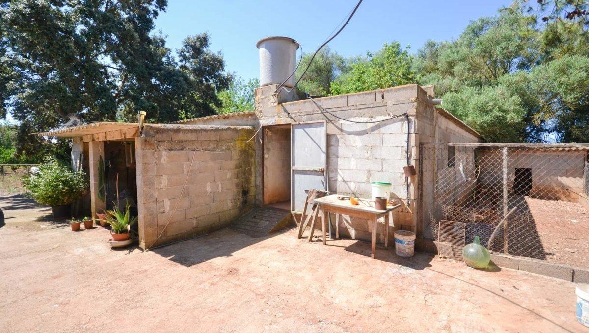Finca rustica en venta con casa de campo en son valls felanitx - imagenInmueble12