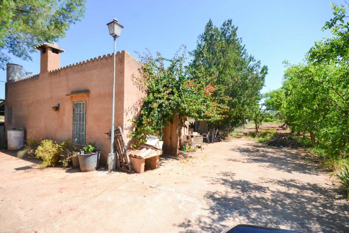 Finca rustica en venta con casa de campo en son valls felanitx - imagenInmueble7