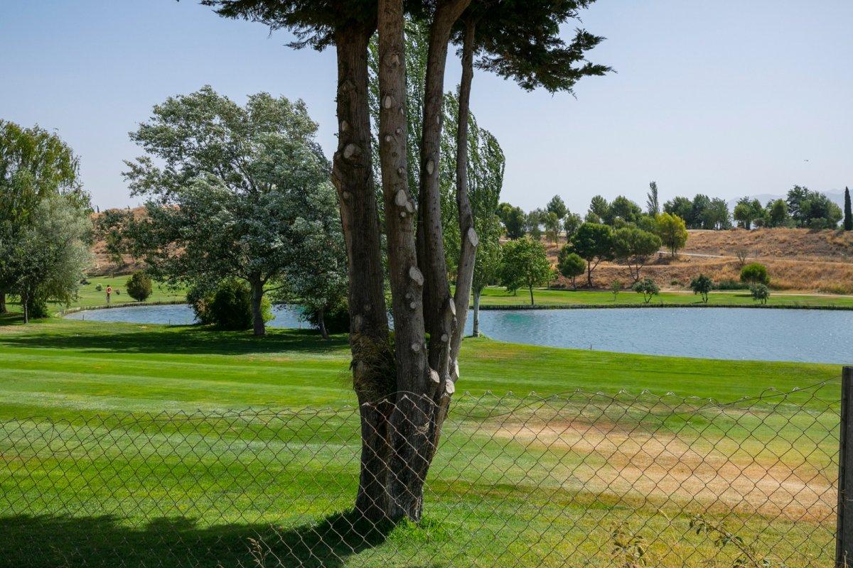 Parcela Urbana en Campo de Golf de Las Gabias (Pedro Verde), Granada