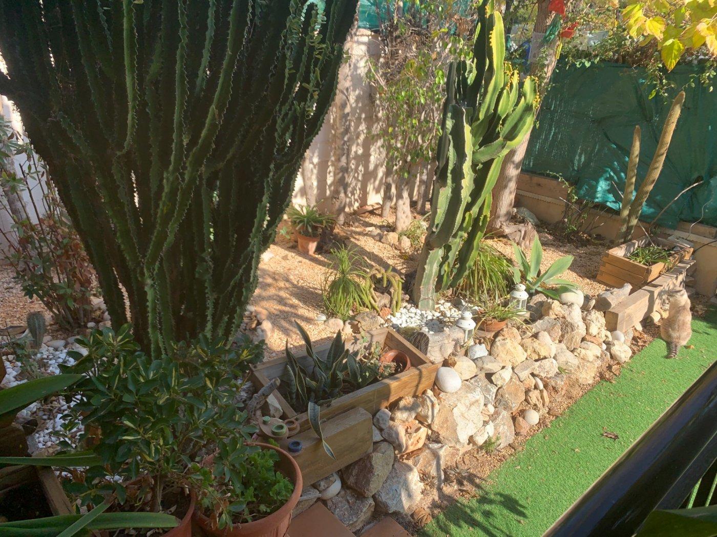 Planta baja adosada con jardin en bonalva - imagenInmueble22
