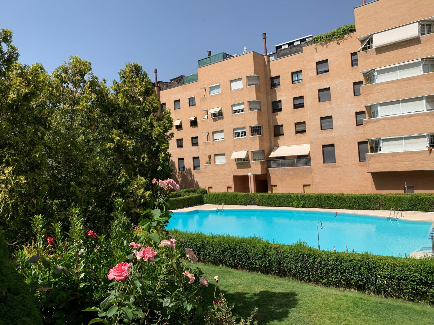 Venta o alquiler de piso en madrid - imagenInmueble35