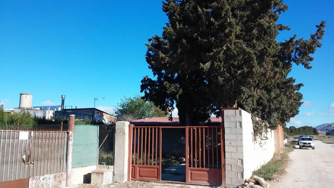 Casas - 00201