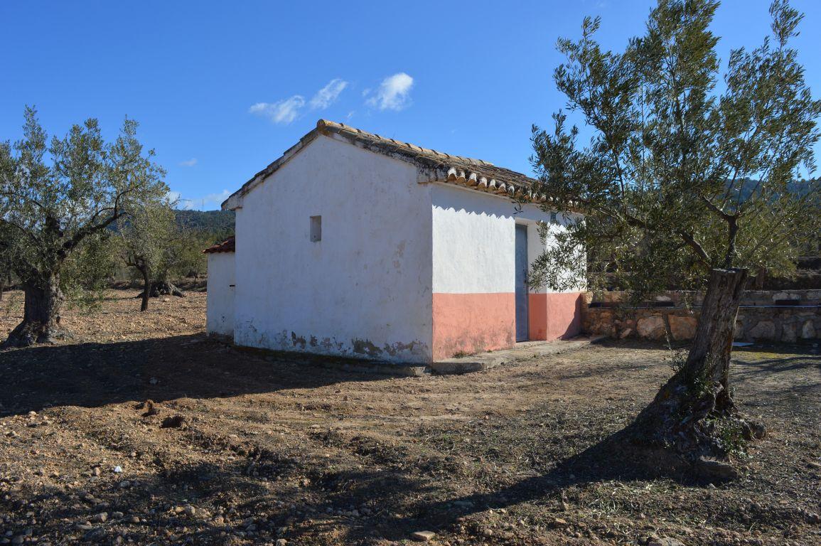 Casas - 00367