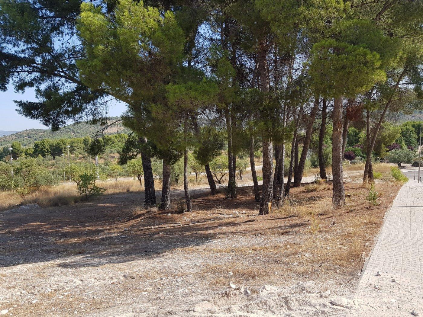 Terrenos rurales - 00654