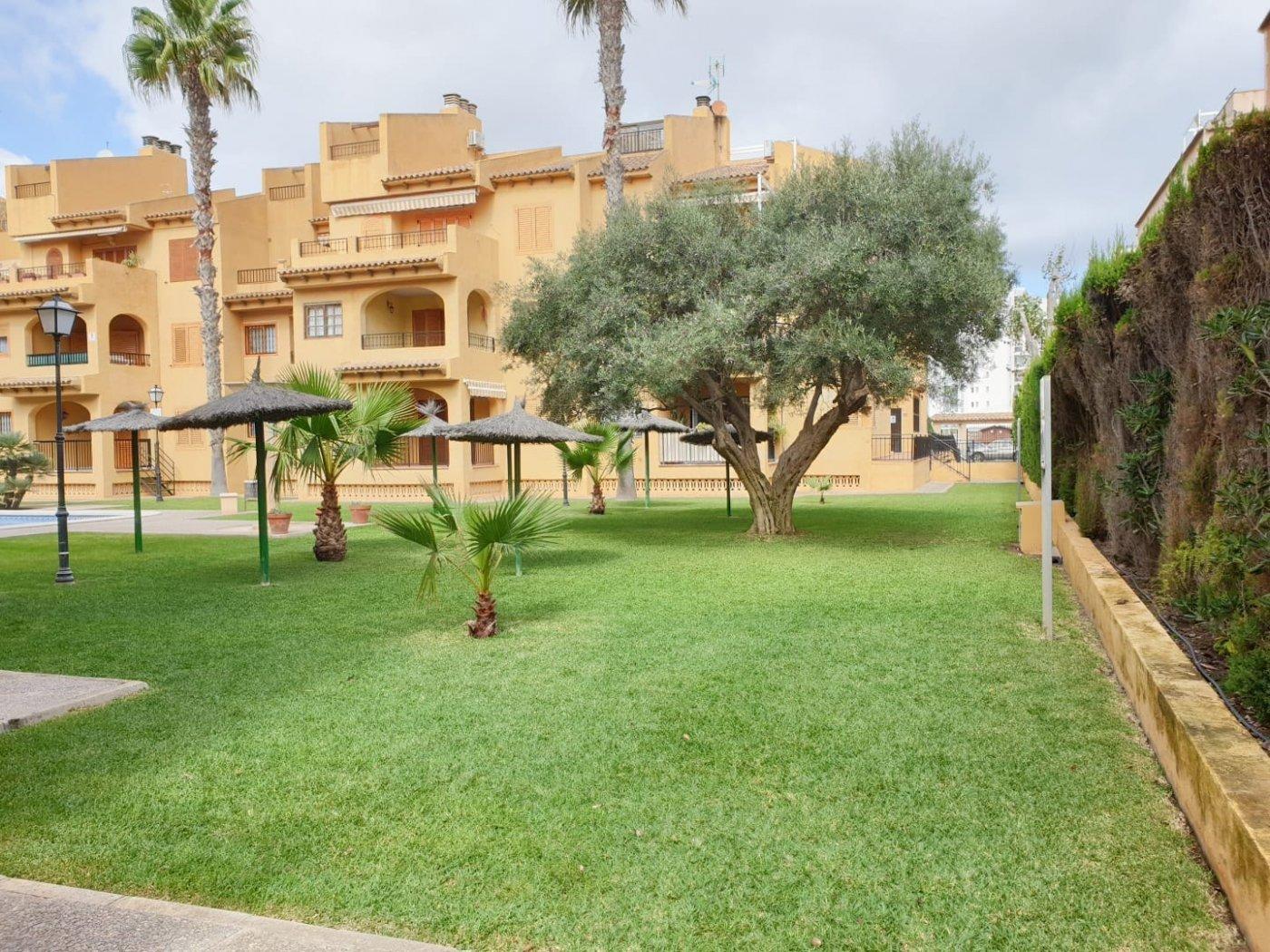 Opportunité! Appartement sur la plage avec garage et débarras inclus dans le prix, La Mata! (La Mata)