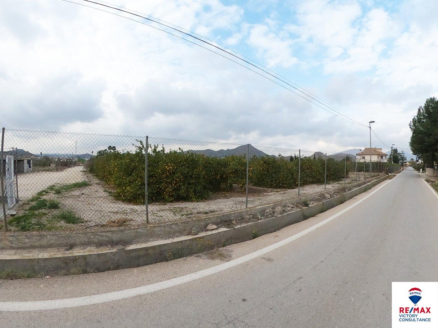 Terreno urbano en el esparragal - imagenInmueble0