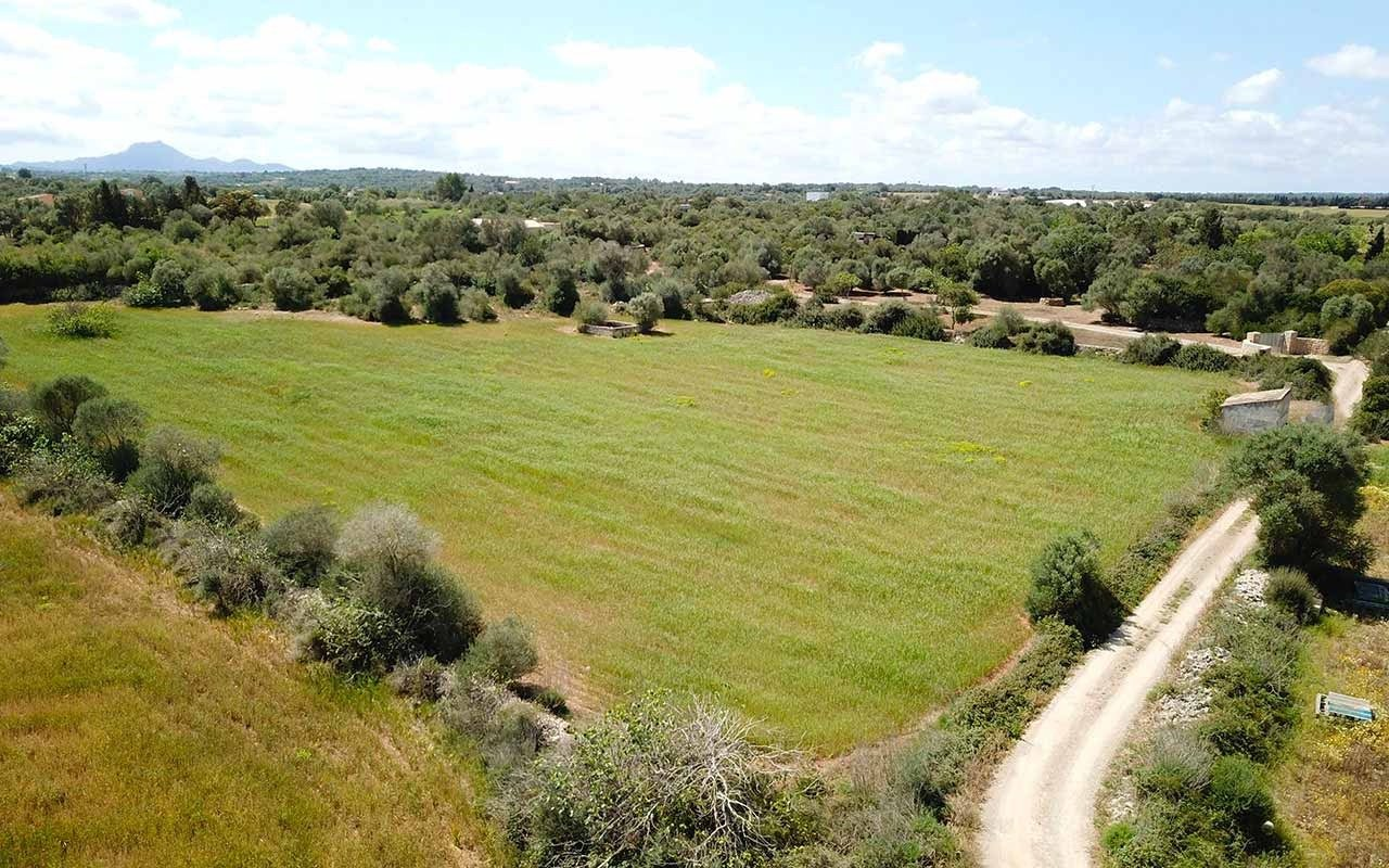 Land for sale in Afueras, Manacor