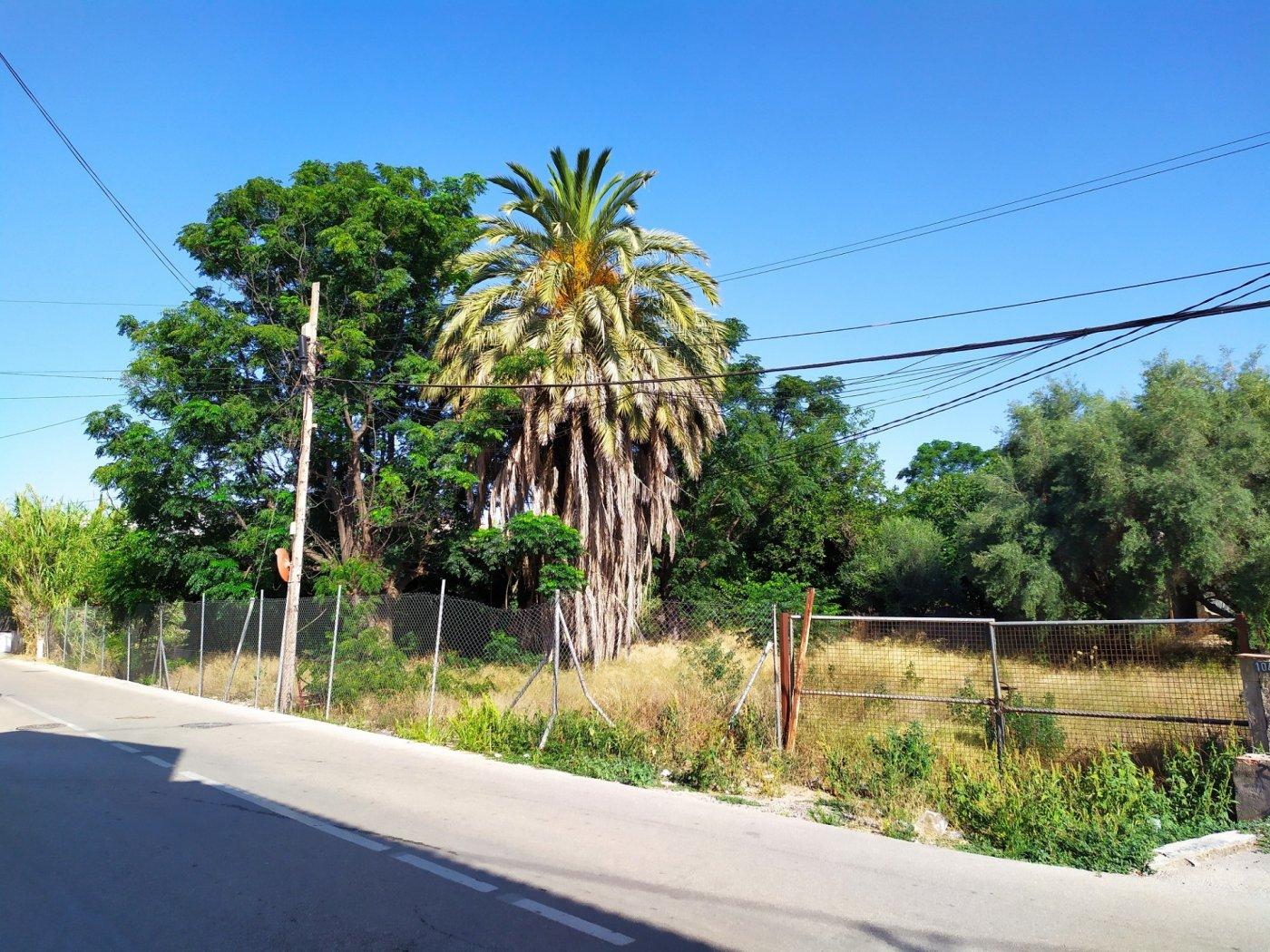Gran terreno urbanizable en la arboleja - imagenInmueble3